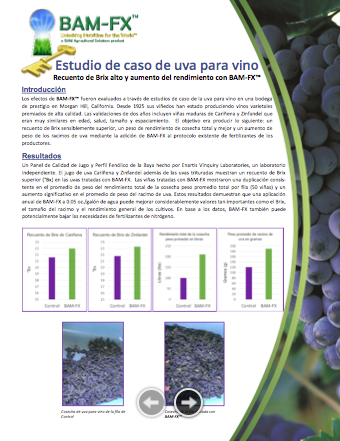 Wine Grape Case Study